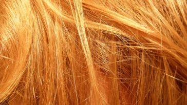 Quanti capelli abbiamo