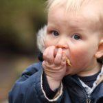 Bambino mangia cibo caduto per terra entro cinque secondi