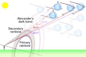 fisica dell'arcobaleno visione