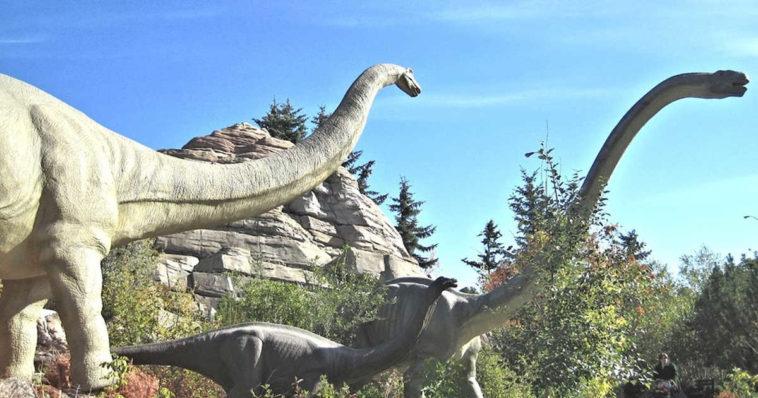 Dinosauri in un parco