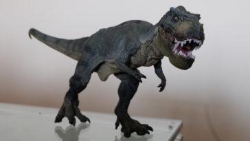 Un dinosauro carnivoro